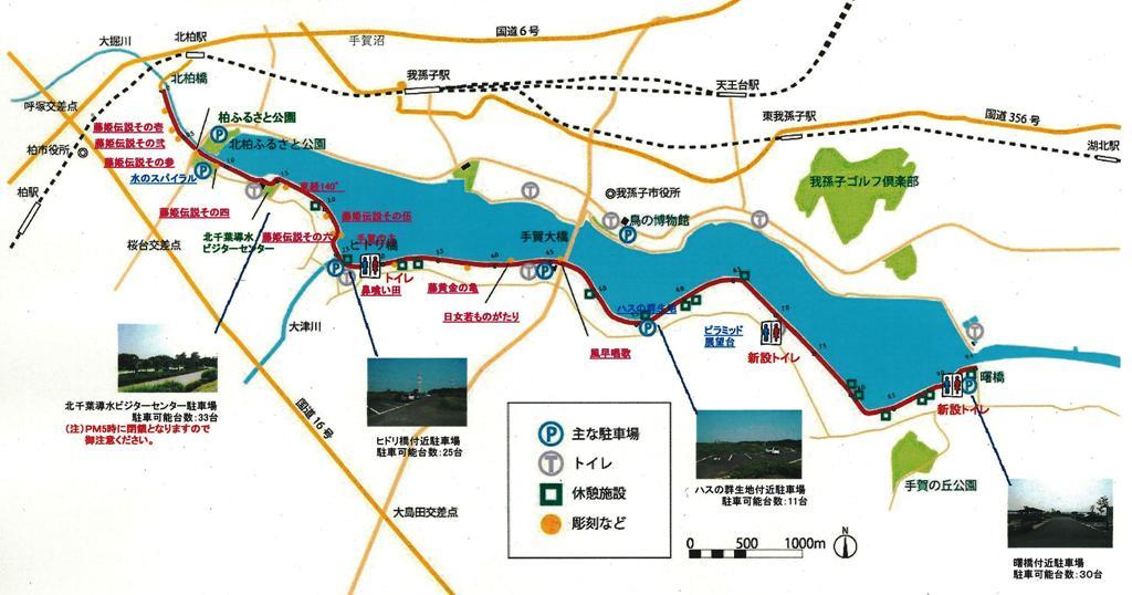 手賀沼自然ふれあい緑道|県立都市公園/千葉県