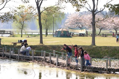 場 公園 キャンプ 橘 ふれあい