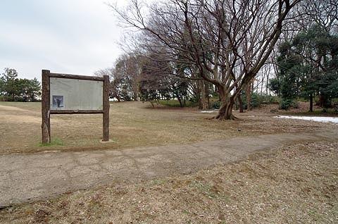 堀之内貝塚/千葉県